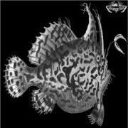 Craig Padilla & Sendelica - Strange Fish One