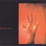 Porcupine Tree - XM