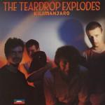 Teardrop Explodes - Kilimanjaro