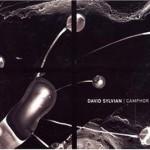 David Sylvian – Camphor